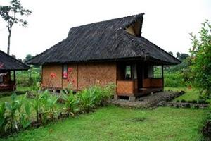 TugasTugas Sekolah Gambar Rumah Adat 34 Provinsi di