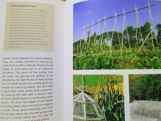 Photo of page 147 from RHS: Half-Hour Allotment by Lia Leenderzt.
