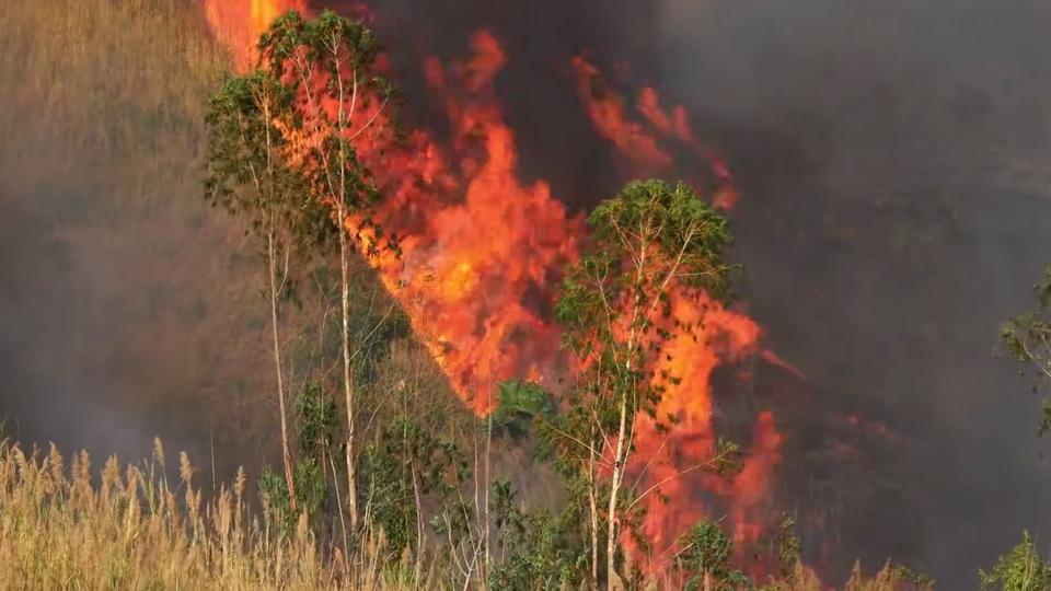 هيئة الأرصاد الجوية: حرائق الأمازون ستؤثر على مصر