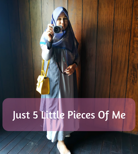 Just 5 Little Pieces Of Me