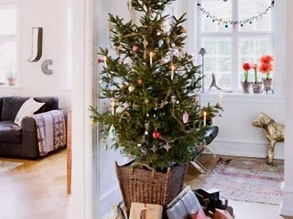 Sotto L'Albero di Natale/ Under The Christmast Tree