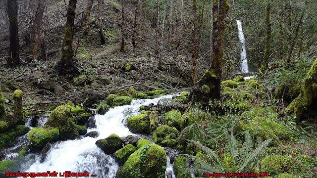 Oregon Dry Creek WaterFalls