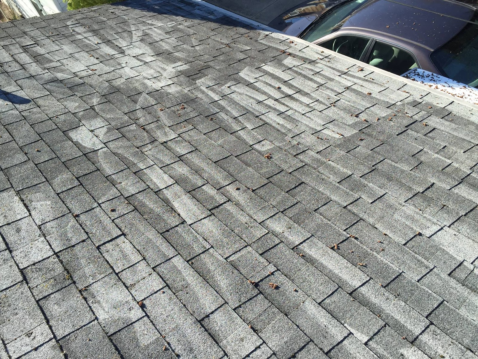 All Roof Cleaning Being Advertised Here In The Tampa Florida Area Is NOT  The Same. These Poor Folks Up In North Tampa Got A Lower Priced Quote To  Have Their ...