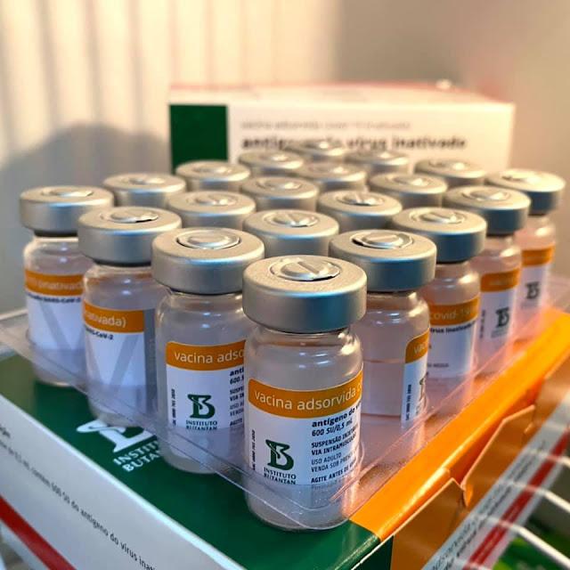 Doses da vacina desenvolvida pelo Instituto Butantan