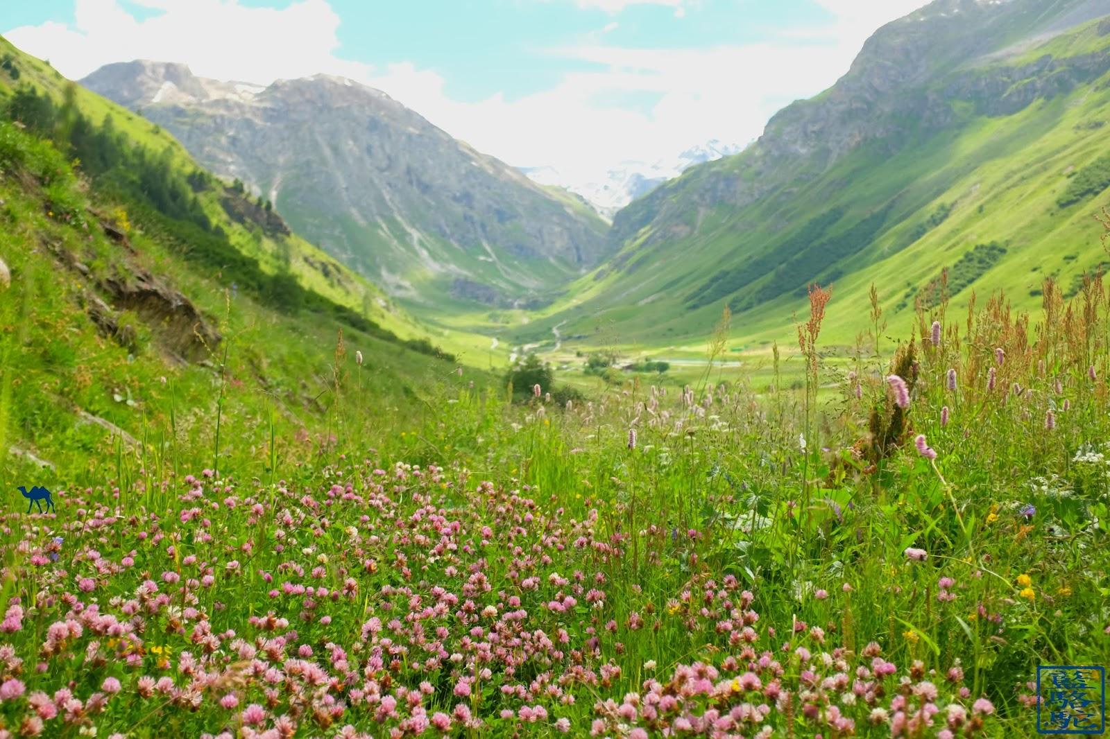 Le Chameau Bleu - Val d'isere - Champetre - Randonnée