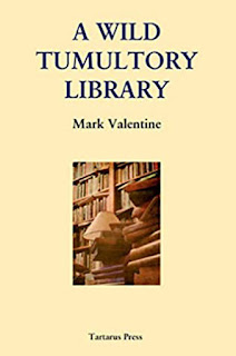 A Wild Tumultory Library by Mark Valentine