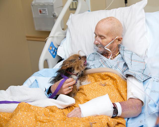 Умирающий старик и его любимый пёс встретились в последний раз! Это очень трогательное прощание!