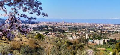 Si inizia a salire con questo bellissimo panorama di Firenze
