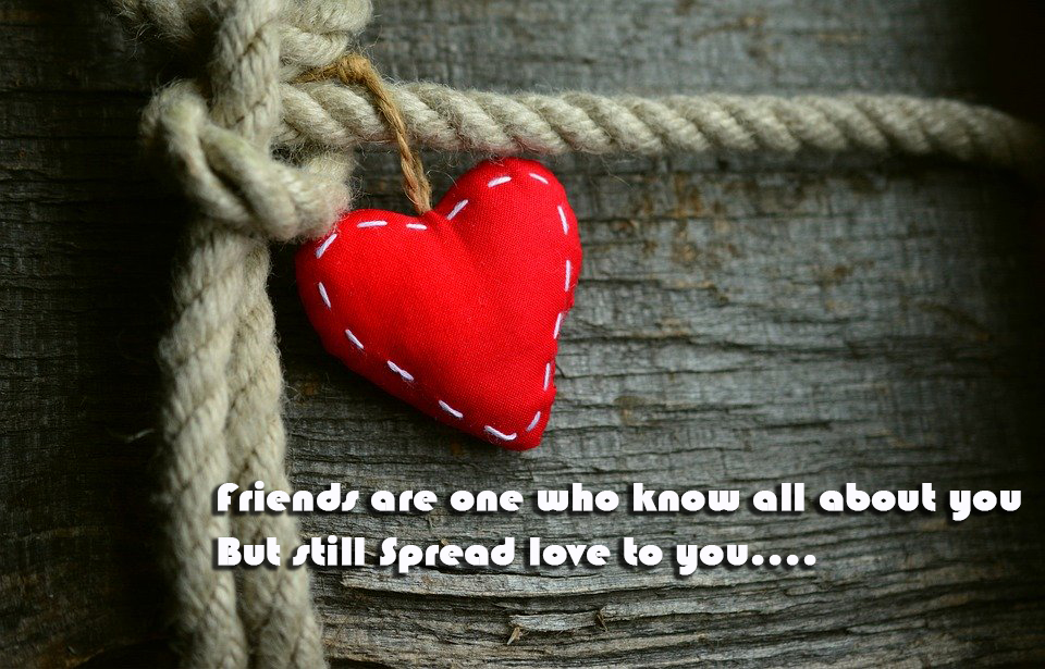 July 30- International Friendship Day Wishes in Pics