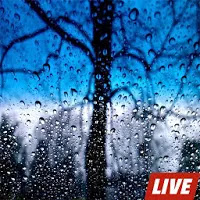 Rain Live Wallpapers Apk Download for Android