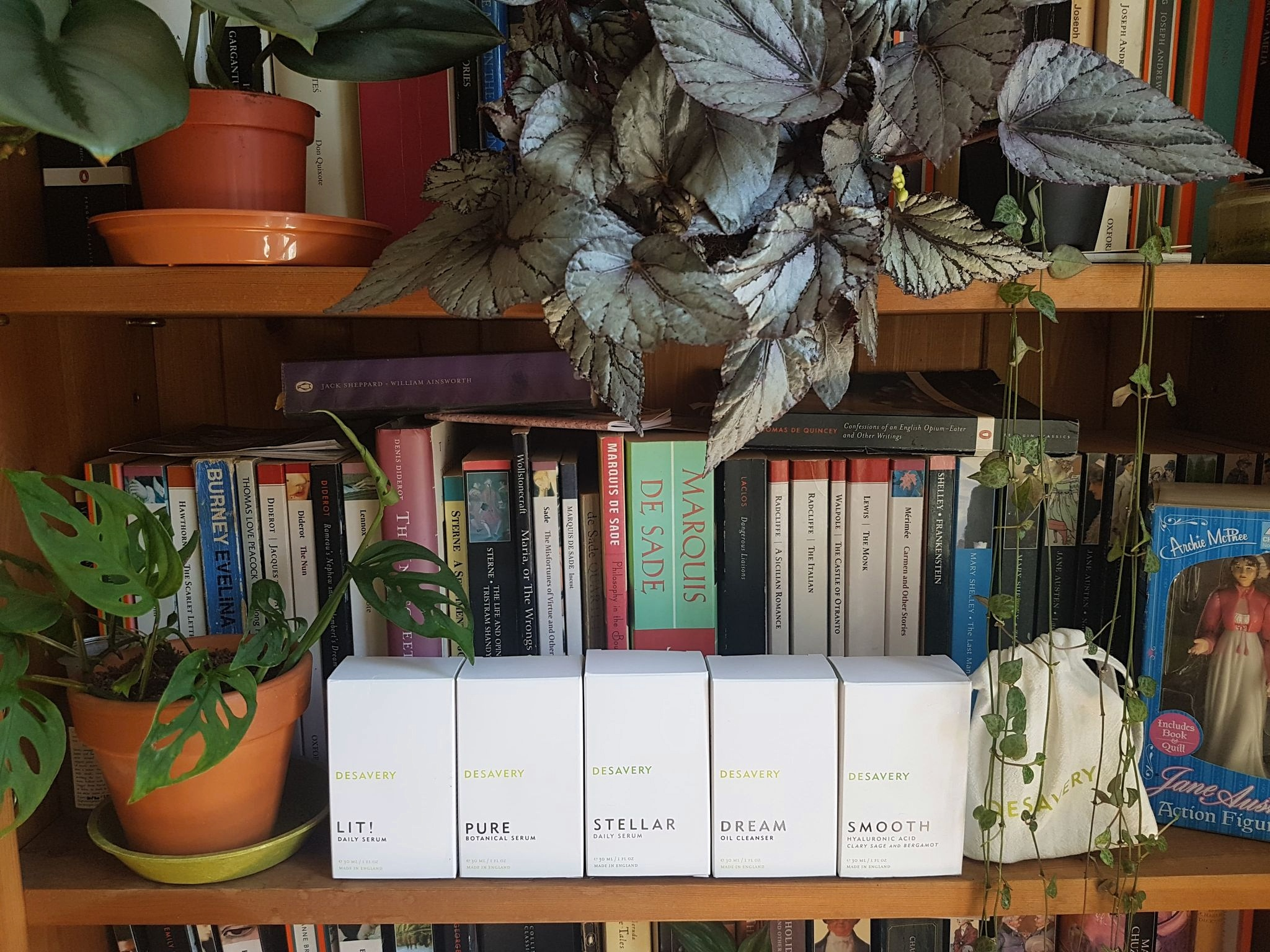 a selection of organic skincare from Desavery all lined up in a row on a bookshelf and surrounded by plants