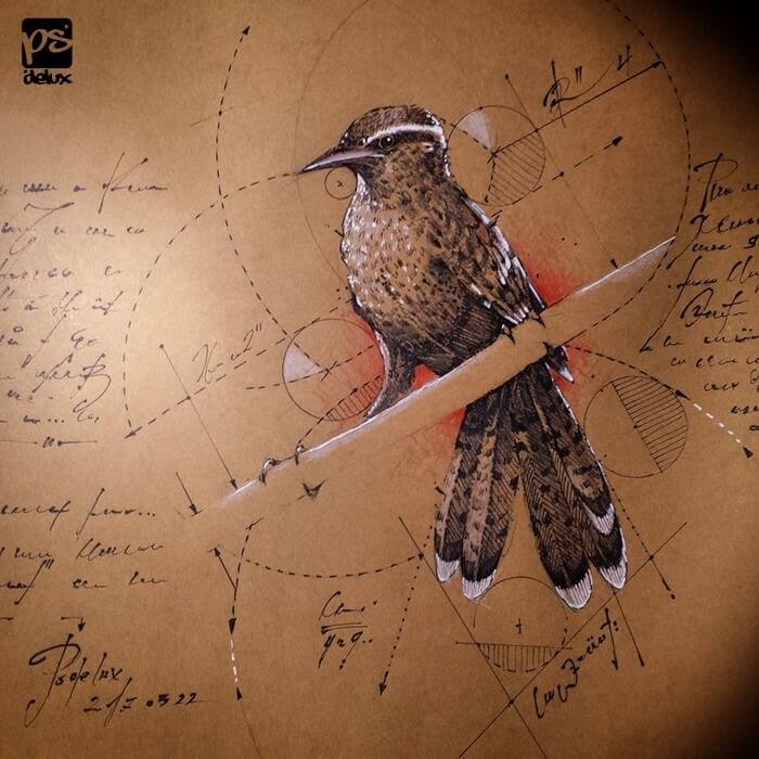 06-Bird-psdelux-Geometric-Animal-Sketches-and-1-Alien-www-designstack-co