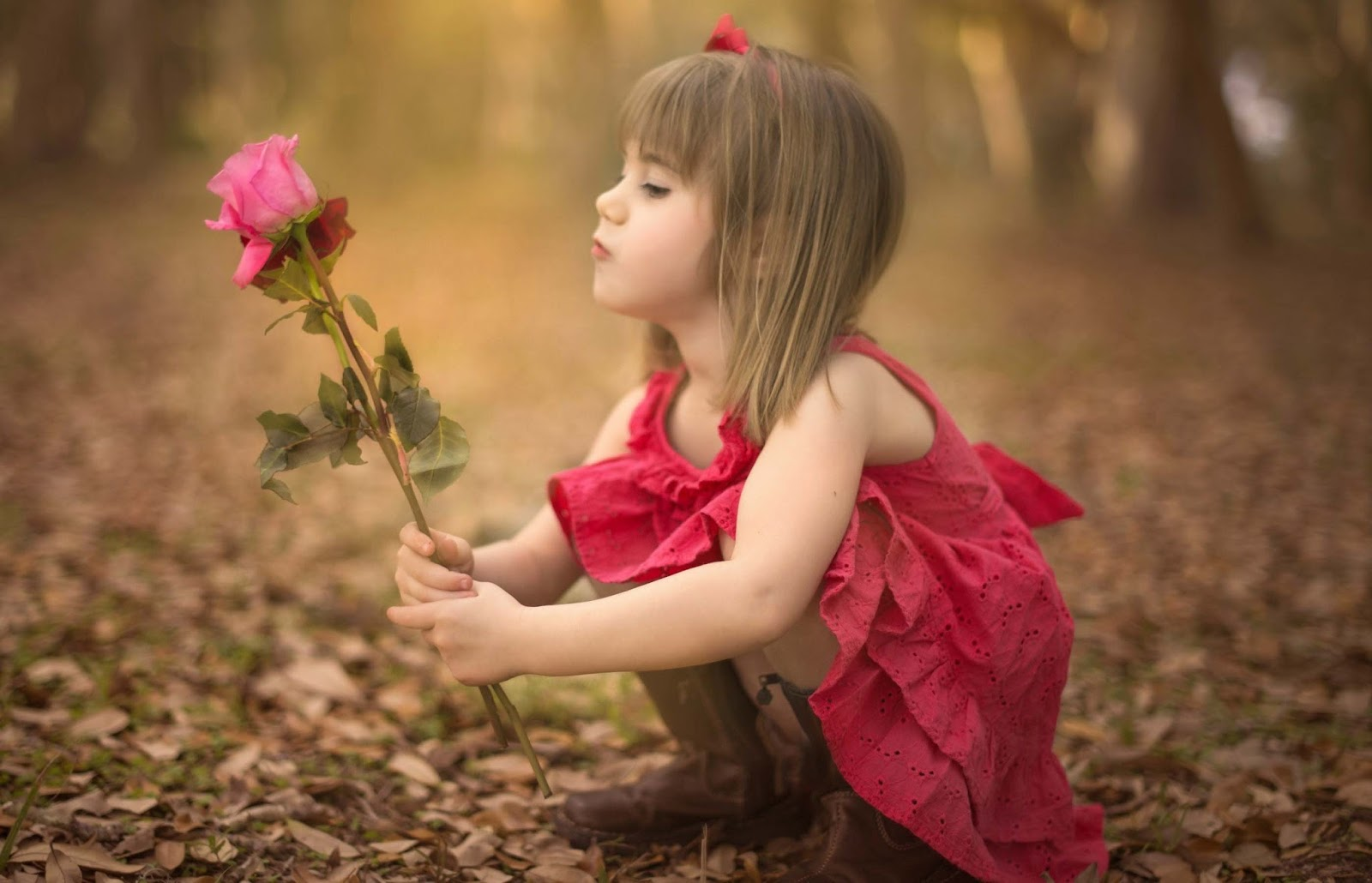 Cute and lovely baby pictures free download - Boy with rose wallpaper ...