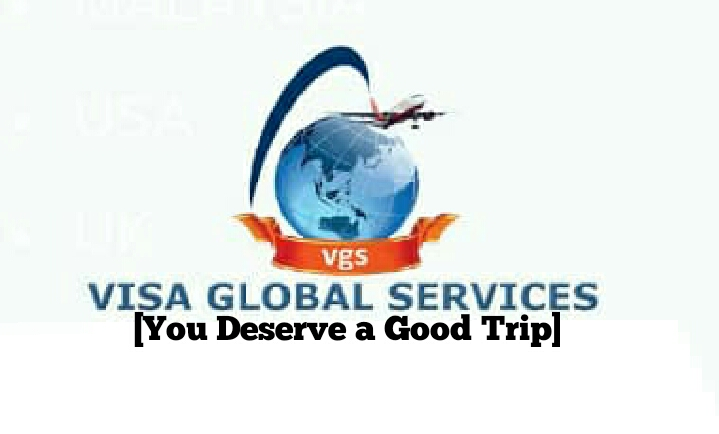 Visa Global Services