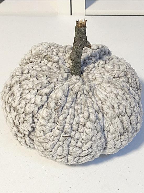 pumpkin with stick stem