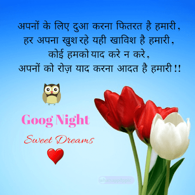 good-night-images-with-love-messages-in-hindi