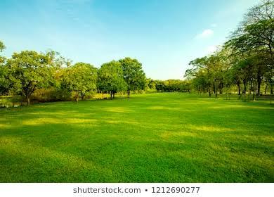 બિનખેડૂત પણ ખેતીની જમીન ખરીદી શકે: સરકારનો મહત્વનો નિર્ણય Non-farmers can also buy agricultural land: An important decision of the government