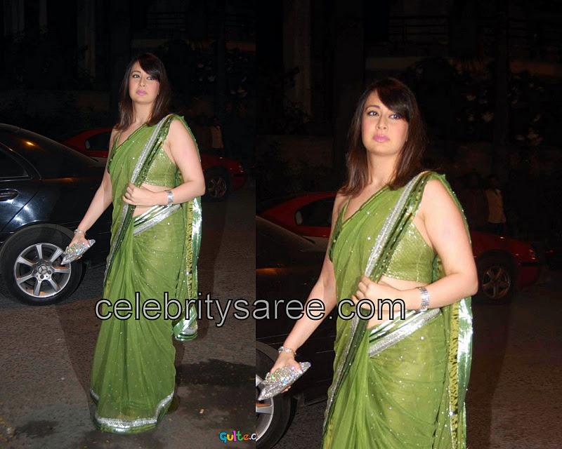 Preeti Jhangiani In Parrot Green Netted Sari