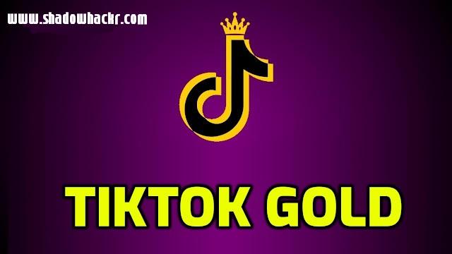تحميل تطبيق تيك توك الذهبي بمميزات جبارة TikTok Gold