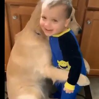Ternura en estado puro adorable niño y un perro cachorros y tecnologia