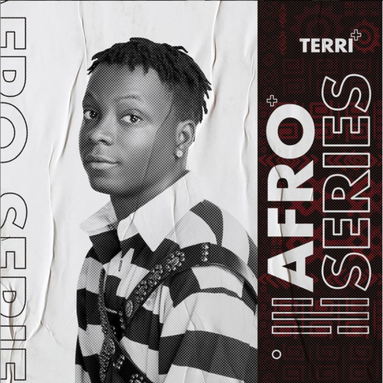 "Terri – ""AfroSeries Review"", This Project Didn't Meet Up With Our Huge Expectations… #Arewapublisize"