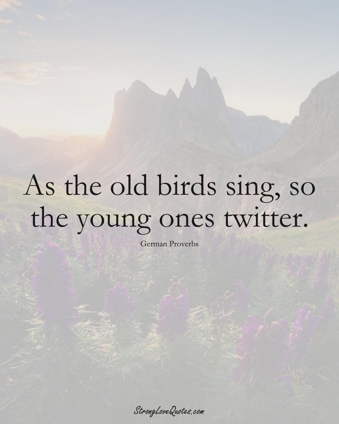 As the old birds sing, so the young ones twitter. (German Sayings);  #EuropeanSayings