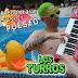 LOS TURROS - PREGUNTAME SI ESTOY PUESTO