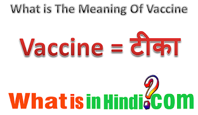 What is the meaning of Vaccine in Hindi