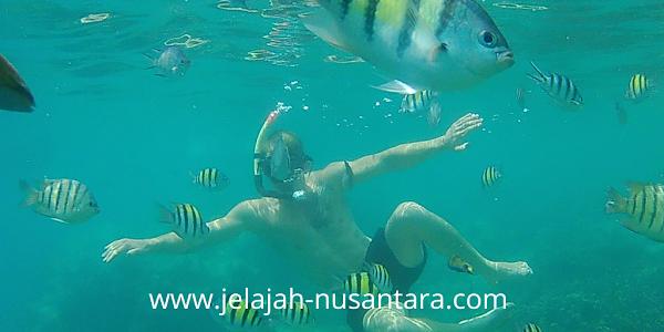 paket wisata open trip private trip pulau pramuka 2 hari 1 malam murah