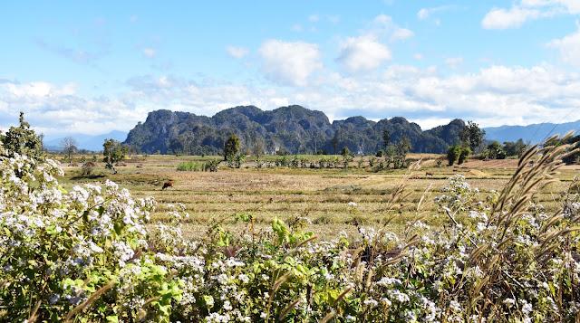 Loop de Thakhek, Laos