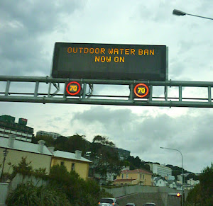 Brave new world for Wellingtonians