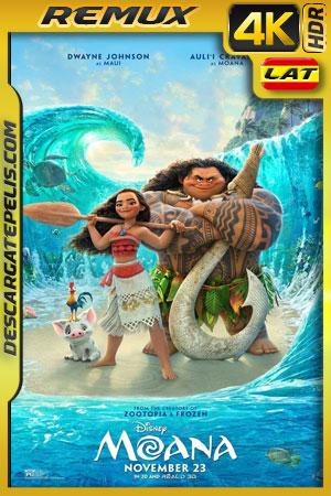 Moana: Un mar de aventuras (2016) 4K BDRemux HDR Latino – Ingles