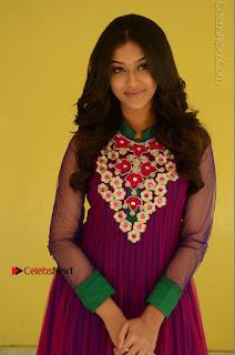 Actress Pooja Jhaveri Latest Stills in Purple Salwar Kameezt at Dwaraka Success Meet  0052.JPG
