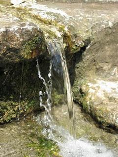 Naturalne źródło wody