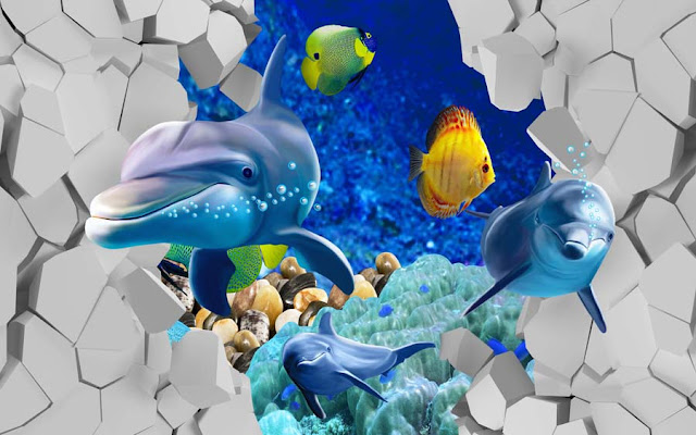 3D Dolphins Fish PSD Wall Background