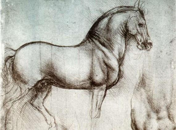 Muscler son cheval c'est bien mais muscler le cavalier c'est mieux !