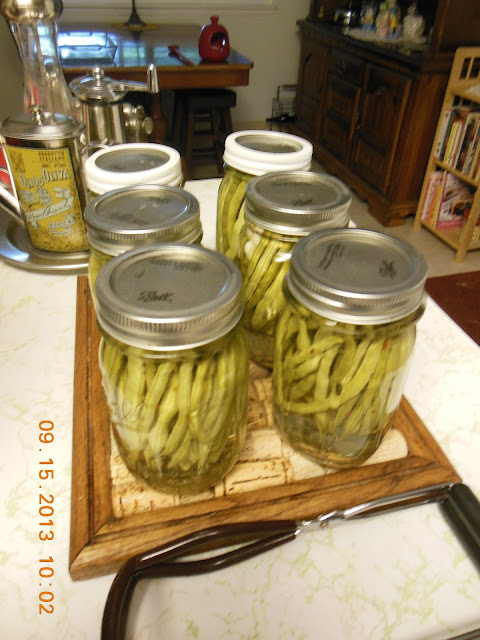 Pickled Green Beans, preserving the harvest, small batch recipe.