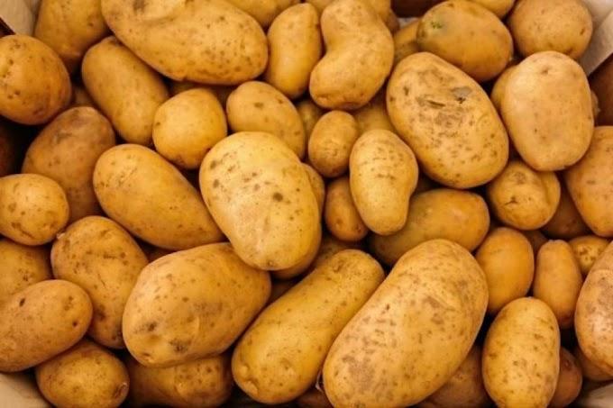 Našeg krumpira nije bilo na tržnicama Europske unije