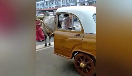 Delman sultan bak mobil klasik