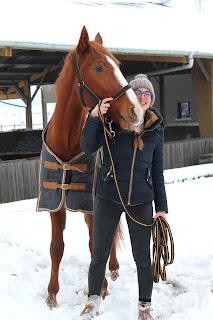 Photos dans la neige avec un cheval