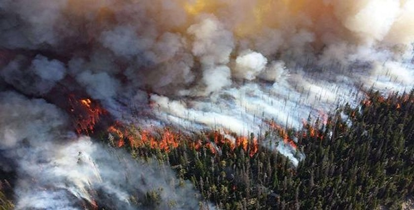 Devastating fires in the Arctic.