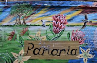 Panania Street Art   Mural by Reubszz