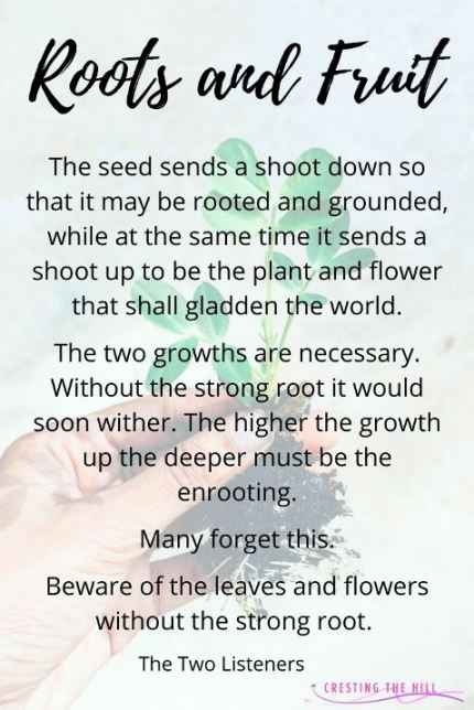 putting down roots to help your output flourish