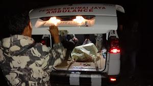 Harimau Sumatera kembali memakan korban jiwa