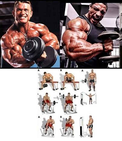 4 Advanced Tips To Build Bigger Biceps