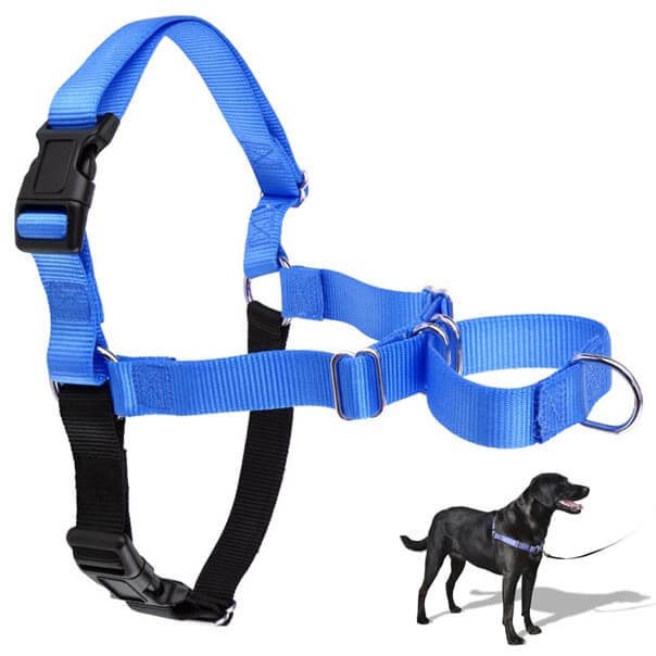 non-pulling-pet-harness-au