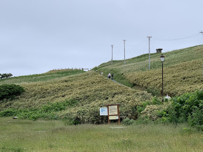 神威岬の門を望む