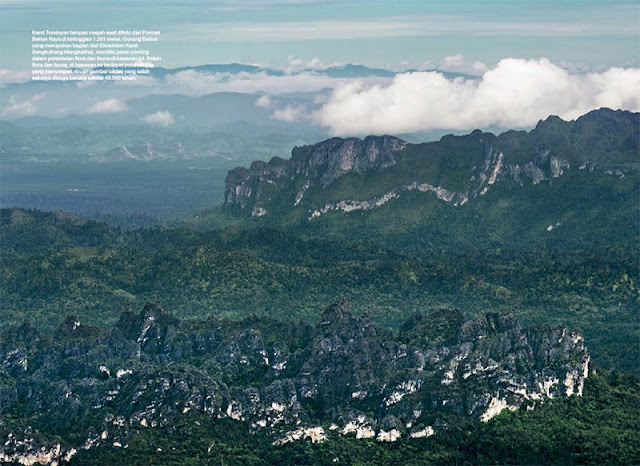 Gunung Beriun, Beriun, Kutai Timur, Karst Sangkulirang Mangkalihat, Puncak Beriun, Beriun Raya, Puncak Gunung Beriun, Karst Sangkulirang, Karst Mangkalihat, Sungai Marak, Karst Ara Raya, Karst Tutunambo, Kabupaten Berau, Sangatta, Epikarst, Perikarst, Kalimantan Timur, Subkarst, Karst, Hutan Kalimantan, Hutan Tropis, Karst Tondoyan, Puncak Gunung Beriun, Black Borneo Expedition, Eiger, Merabu, Karst Merabu, Karst, Pindi Setiawan, stock photo; culture stock photo; indonesia stock photo; indonesia photo; foto wisata; daerah wisata indonesia; tourism indonesia; amazing place indonesia; place to visit in indonesia; travel photographer; assignment for photographer; culture photo of indonesia