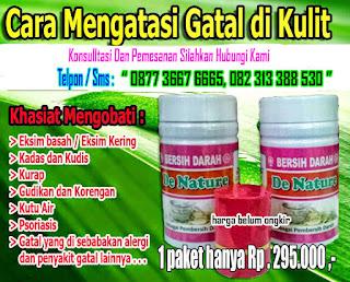 Obat Herbal Eksim Dari Tanaman Herbal