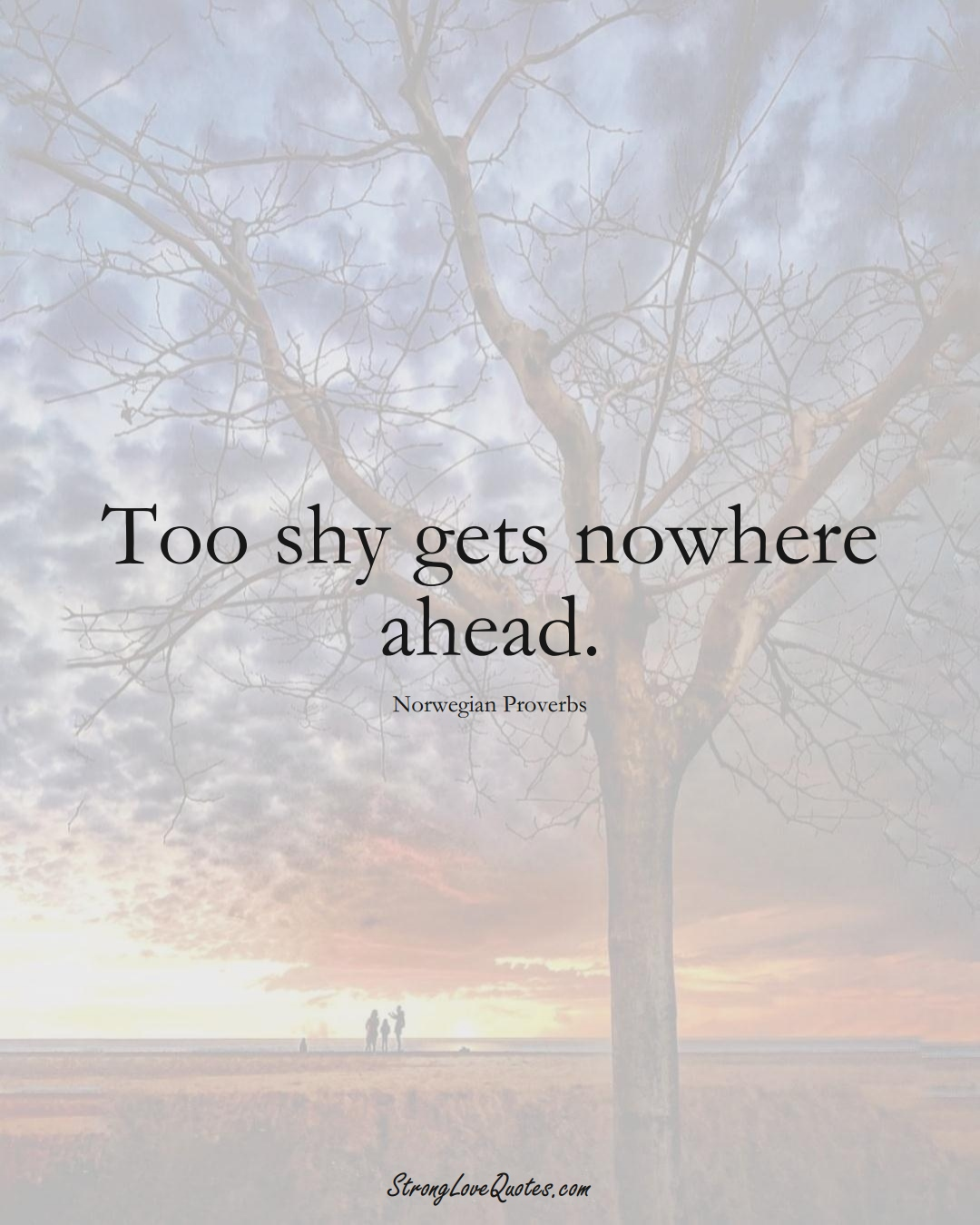 Too shy gets nowhere ahead. (Norwegian Sayings);  #EuropeanSayings
